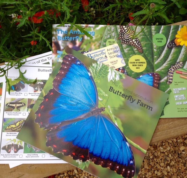 Visitor Guide and Children's Activity Book