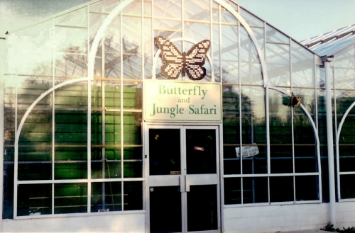 Original Entrance to the Butterfly Farm