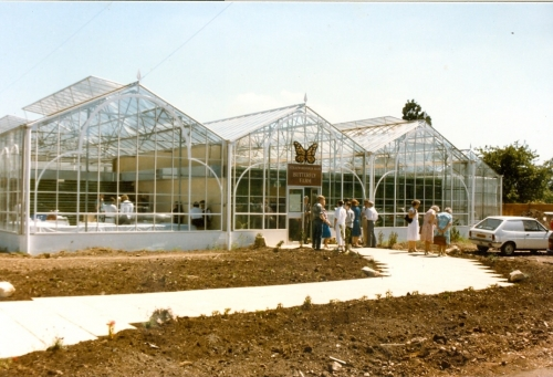 Newly opened Stratford Butterfly Farm 1985